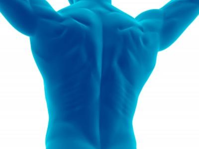 Säulenkraft aus Schultern, Rumpf und Hüften, Functional Training Magazin, Functional Training
