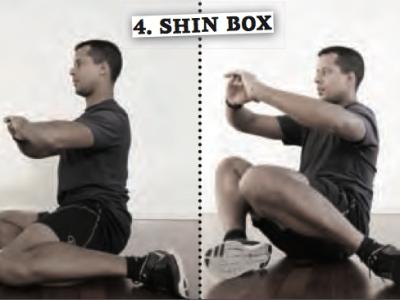 Functional_Training_fuer_Golfer_Shin_Box