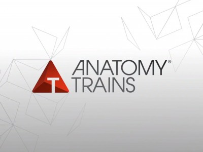 Anatomy Trains - von Tom Myers,Functional Training Magazin, Functional Training