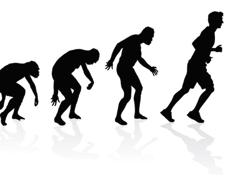 Läufer  Die Fähigkeit lange zu Laufen - der entscheidende Vorteil ...
