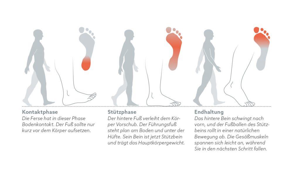 Sich richtig bewegen: Gehen - Functional Training Magazin ...