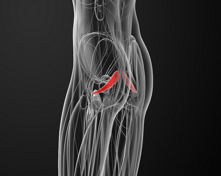 trainieren der beckenmuskulatur