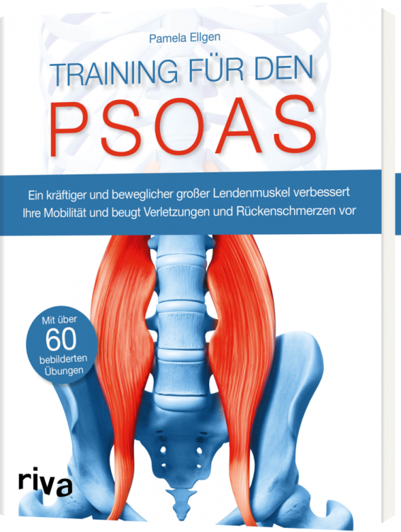 Functional Training Magazin, Functional Training,