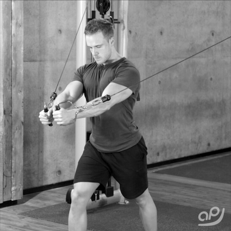 fliegende-kabelzug-2-alpha-progression-benjamin-schnabel-functional-training-magazin